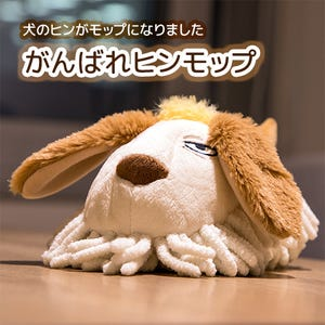 "Heen Desk Duster Plush ""Howl's Moving Castle"", Benelic"