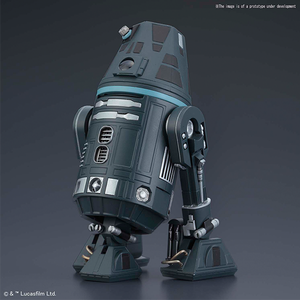 "R4-I9 ""Star Wars"", Bandai Star Wars 1/12 Plastic Model"